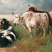 "Henry Schouten ""Cows in the Dutch Dunes"""