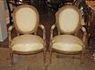 Pair of 19th Century Louis XVI Arm Chairs