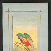 Large Victorian Scrap Print - Colorful Parrot