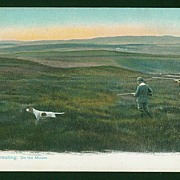 Vintage Hunting Postcard - Grouse Shooting
