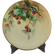 D & C Limoges France Signed Hand Painted Raspberry Plate