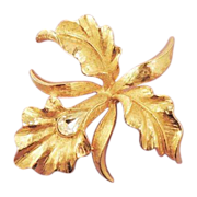 MAMSELLE Gold Iris Vintage Rhinestone Flower Brooch - Signed