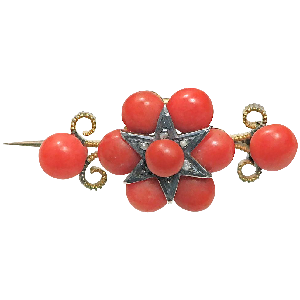 Early Victorian Natural Coral Brooch