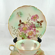 FREE SHIPPING 1950's 1950s Schumann Arzberg Germany Tea Cup Saucer and Desert Plate Set