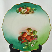 FREE SHIPPING 1930's 1930s Hand Painted Bavaria Fruit Strawberries Apples Cabinet Collector Pl