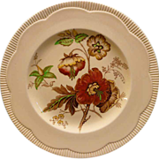 Royal Staffordshire &quot;Georgian Spray&quot; Salad or Dessert Plate With Poppy Design