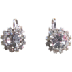 Vintage Clear Rhinestone Clip Earrings With Floral Shape