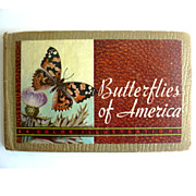 Butterflies of America Whitman Publishing 1934