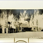 AZO Real Photo Post Card of Gay's Lion Farm El Monte, California