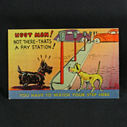 MWM Color Litho Comic Post Card Scotty and His Mutt Pal