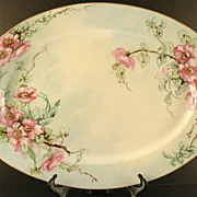 SALE Jaeger Bavaria Porcelain Platter / Tray Hand Painted