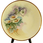 SALE Thomas Bavaria Sevres Porcelain Plate Hand Painted and Signed