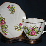 Salisbury - Thistle & Tartan - Teacup Set