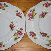 SALE Shelley - Begonia - Dinner Plates +