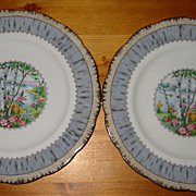 SALE Royal Albert - Silver Birch - Pie Plates (2)