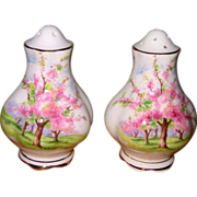 Royal Albert - Blossom Time - Salt & Pepper Set