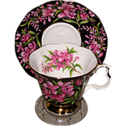 Royal Albert - Fireweed - Teacup Set