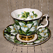 Royal Albert - White Trillium - Teacup Set