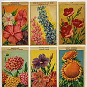 6 Gorgeous Lithograph French Flower Seed Labels #7