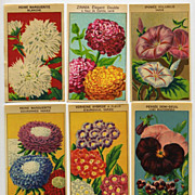 6 Gorgeous Lithograph French Flower Seed Labels #8