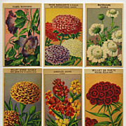 6 Gorgeous Lithograph French Flower Seed Labels #9