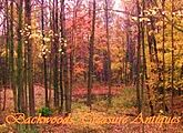 Backwoods Treasure Antiques