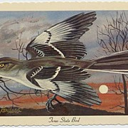 HTF Image KEN HAAG State Birds Postcard~#CE-17 TEXAS Mockingbird~1967, Capital Engravings