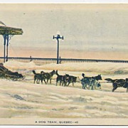 Tinted Old Quebec DOG SLED Photogelatine Postcard~Unused, PECO Ottawa Canada