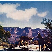 'Deer at Grand Canyon' Color Kodachrome Photo '50s Postcard-UNUSED