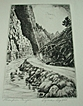 "Lyman Byxbe Etching - ""Thompson Canyon"""
