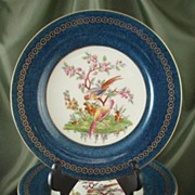 Royal Worcester Powder Blue Dessert Plates for Tiffany & Co - Set of Twelve