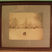Early 20th Century Albumen Print - Snow Scene with St Bernard