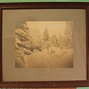 Early 20th Century Albumen Print - Winter Snow Scene with Trees