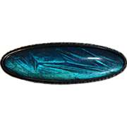 Art Deco Sterling Iridescent Morpho Butterfly Wing Pin