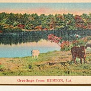 SALE Greetings From Ruston, La.  Postcard #43353