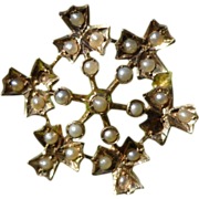 Victorian 10K Gold Seed Pearl Starburst Brooch Pin