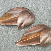 Napier Sterling Vermeil Leaf Scatter Pins