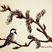 Painting Chickadee Bird on Catkins Signed by Artist