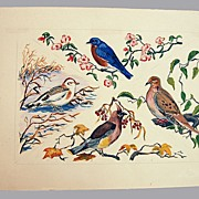 Watercolor Birds Signed By Artist
