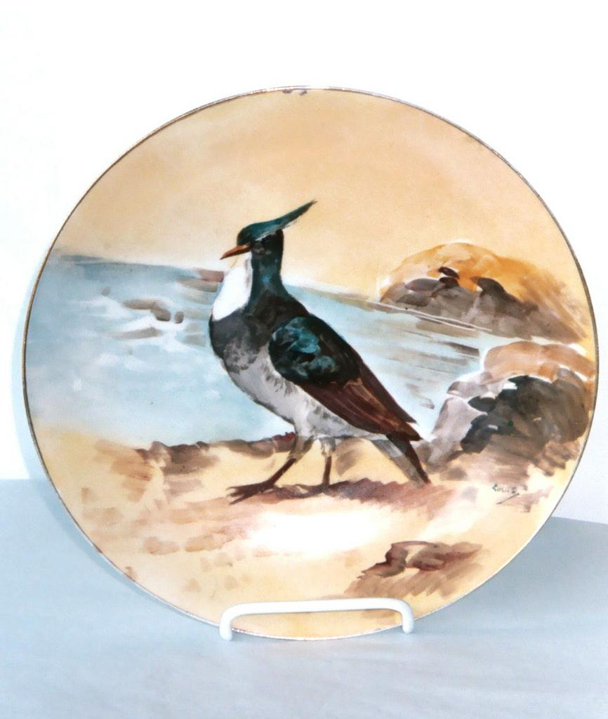 Antique Limoges Porcelain Plate Bird