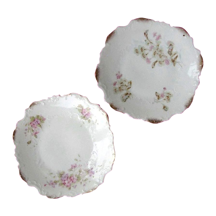 Dresden Germany's Gilded Floral Plates - Pair of Porcelain Embossed Designs, c.1896