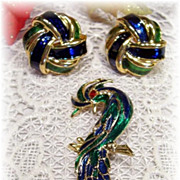 REDUCED Magnificent Enamel Bird Brooch and Earrings