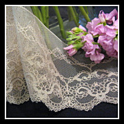 Vintage Tambour Lace by the yard; 3 3/4 inches wide - 5 yds available