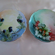 Pair of Bavarian Hand Painted Fruit Plates