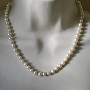 Pearl Necklace with Pearl set Gold Clasp