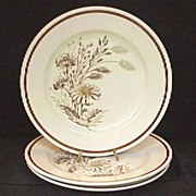 3 Royal Autumn Mist Dinner Plates--Perfect