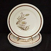 4 Royal China Autumn Mist B&B/Dessert Plates