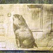 Groundhog or Woodchuck at Door Photo Print * Most Unusual