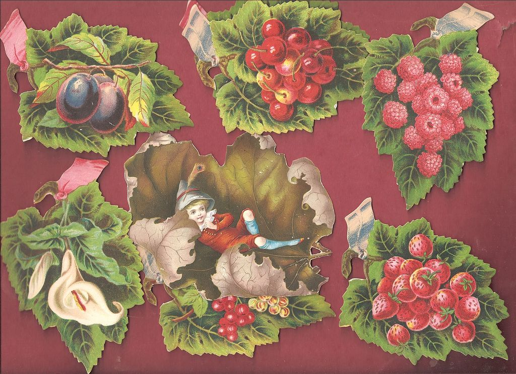 Fruits Flowers & Berries Die Cuts 19th C.