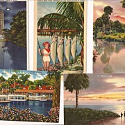 Vintage Florida Postcards ~ Linen Era ~ Group of 5 Cards